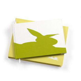 BINTH Baby Book in Original Grass Green